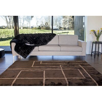 Shortwool Design Corners Brown Area Rug Rug Size: 8 x 116