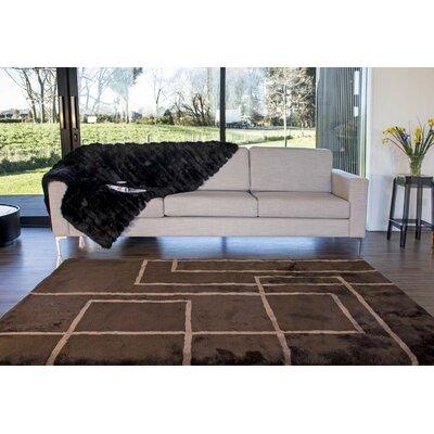 Shortwool Design Corners Brown Area Rug Rug Size: 8