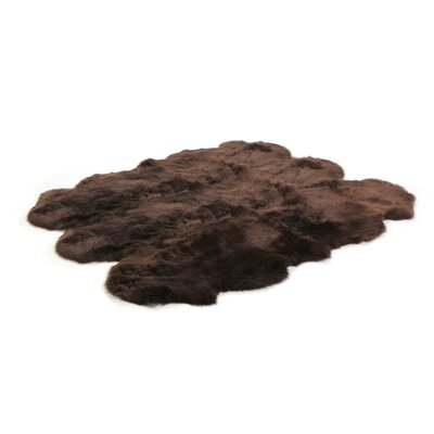Ivory Gold Star Longwool Rug Rug Size: Square 6', Color: Chocolate