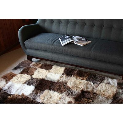Handmade Area Rug Rug Size: 6 x 9