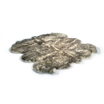 Gold Star Longwool Black/Gray Area Rug Rug Size: Square 6