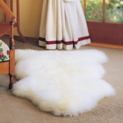 Ivory Gold Star Longwool Area Rug Rug Size: 2 x 3, Color: Ivory