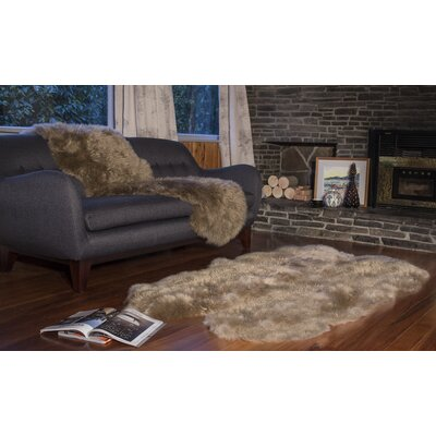 Paco Star Area Rug Rug Size: Rectangle 4 x 6