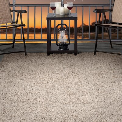Shag Beige Indoor/Outdoor Area Rug Rug Size: 8 x 10