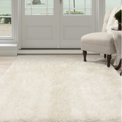 Shag Hand-Woven Beige Area Rug Rug Size: 53 x 77
