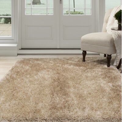 Shag Hand-Woven Beige Area Rug Rug Size: Rectangle 8 x 10