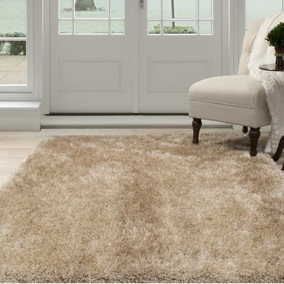Shag Hand-Woven Beige Area Rug Rug Size: Rectangle 53 x 77