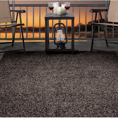 Shag Brown Indoor/Outdoor Area Rug Rug Size: Rectangle 8 x 10