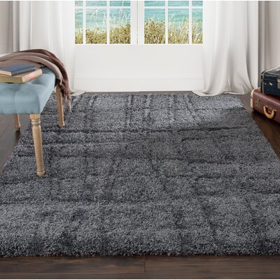 Sculptured Gray Area Rug Rug Size: 5 x 77