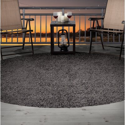 Shag Gray Indoor/Outdoor Area Rug Rug Size: Round 8