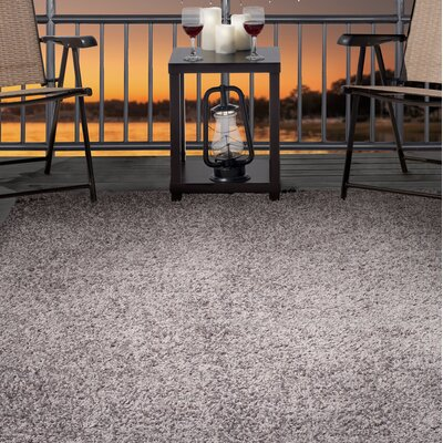 Shag Gray Indoor/Outdoor Area Rug Rug Size: Rectangle 8 x 10