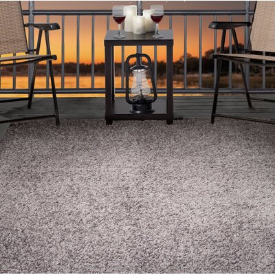 Shag Gray Indoor/Outdoor Area Rug Rug Size: Rectangle 5 x 77