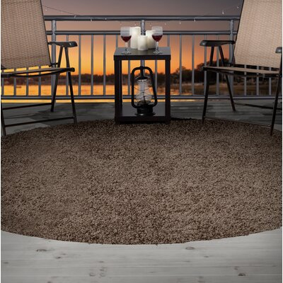Shag Brown Indoor/Outdoor Area Rug Rug Size: Round 8