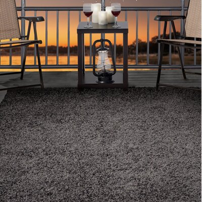 Shag Gray Indoor/Outdoor Area Rug Rug Size: 8' x 10'