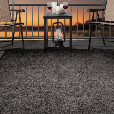 Shag Gray Indoor/Outdoor Area Rug Rug Size: Rectangle 33 x 5
