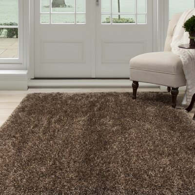 Shag Hand-Woven Brown Area Rug Rug Size: Rectangle 53 x 77