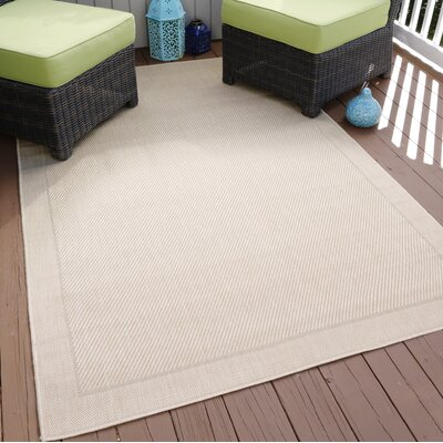 Beige Indoor/Outdoor Area Rug