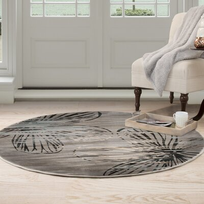 Modern Gray Area Rug Rug Size: Round 5