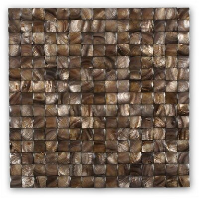 Kalai .79 x .79 Glass  Pearl Shell Mosaic Tile in Brown