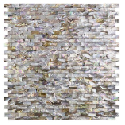 Lokahi Brume Radom Sized Glass Pearl Shell Mosaic Tile in Gold