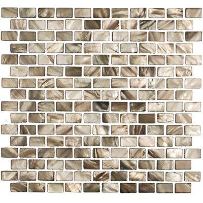 Pitzy Donegal 1 x .5 Glass  Pearl Shell Mosaic Tile in Gray