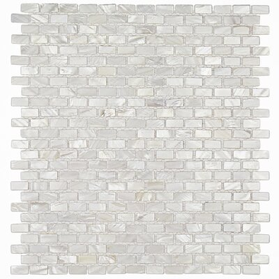 Pitzy .75 x .31 Glass Pearl Shell Mosaic Tile in White