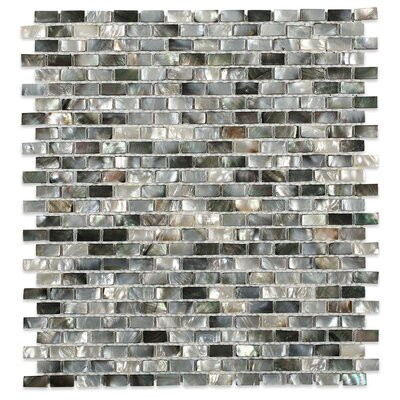 Donegal .79 x .39 Glass Pearl Shell Mosaic Tile in Gray