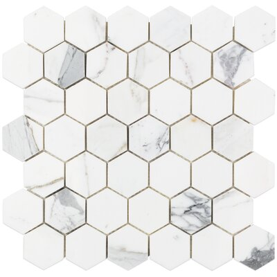 Hexagon 12