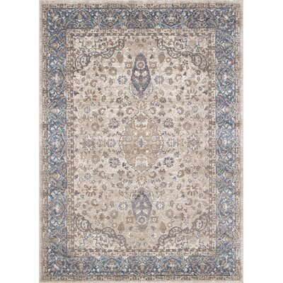 Aurore Traditional Style Rectangle Ash Area Rug