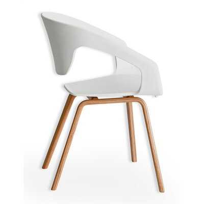 Bird Nest Solid Wood Dining Chair Finish: White