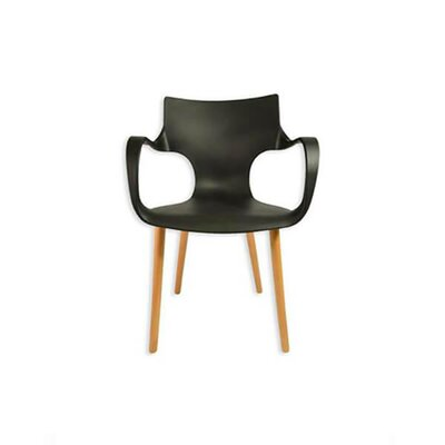 Big Arms Arm Chair Finish: Black