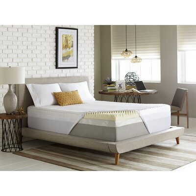 Reversible 4 Memory Foam Mattress Topper Size: Queen