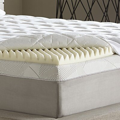 Reversible 3.5 Memory Foam Mattress Topper Size: Queen