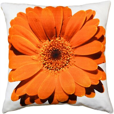 Otto Daisy Flower Indoor/Outdoor Throw Pillow Color: Orange
