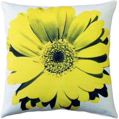 Otto Daisy Flower Indoor/Outdoor Throw Pillow Color: Yellow