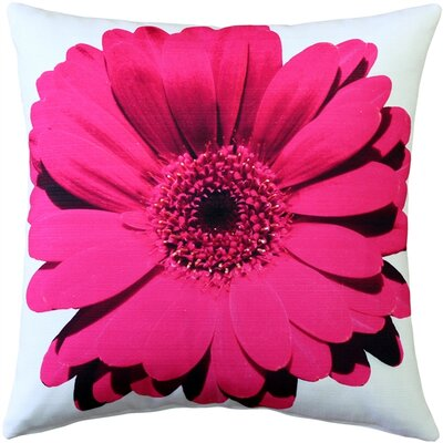 Bold Daisy Flower Indoor/Outdoor Throw Pillow Color: Pink