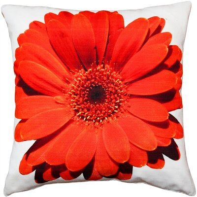 Otto Daisy Flower Indoor/Outdoor Throw Pillow Color: Red