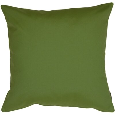 Otselic Outdoor Sunbrella Throw Pillow Color: Palm Green