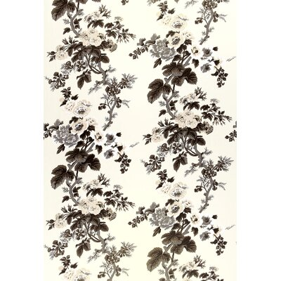 Pyne Hollyhock Fabric Upholstery: Charcoal