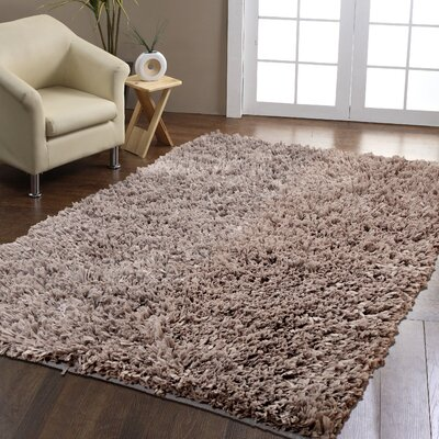 Hand-Woven Silver Area Rug Rug Size: 3 x 5