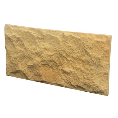 Euroc 5 x 11 Manufactured Stone Veneer Wall Tile in Yellow Sand (Set of 6)