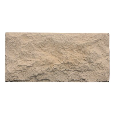 Euroc 5 x 11 Manufactured Stone Veneer Veneer Wall Tile in Beige (Set of 6)