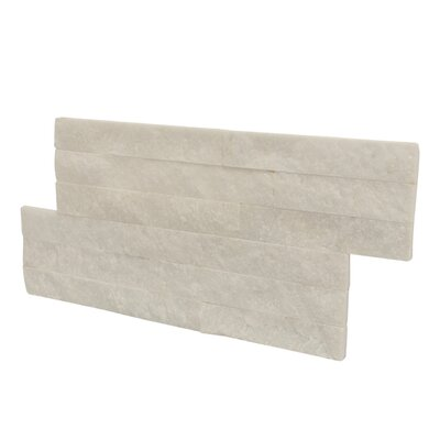 Canyon Random Sized Natural Ledgestone Wall Tile in White (Set of 6)