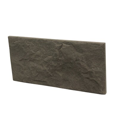 Euroc 5 x 11 Manufactured Stone Veneer Wall Tile in Gray (Set of 10)