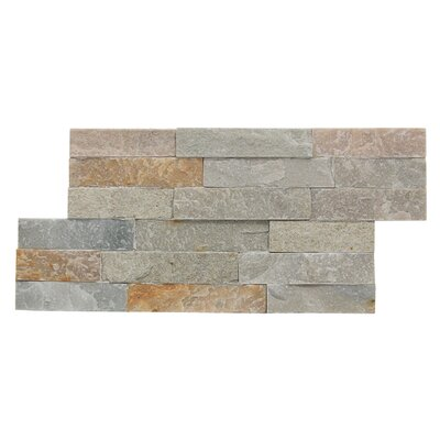 Canyon Random Sized Natural Ledgestone Wall Tile (Set of 6)