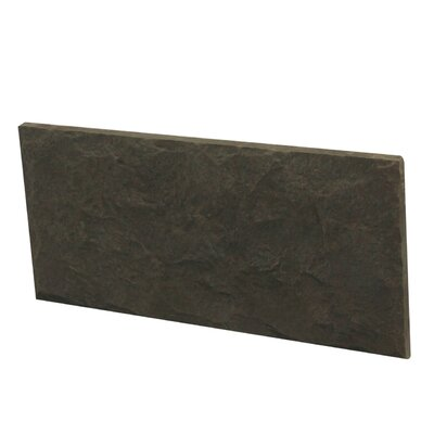 Euroc 5 x 11 Manufactured Stone Veneer Wall Tile in Charcoal (Set of 6)