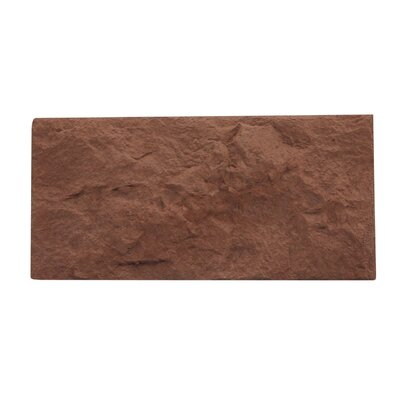 Euroc 5 x 11 Manufactured Stone Veneer Wall Tile in Brown (Set of 10)