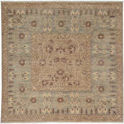 Ziegler Hand-Knotted Gray / Brown Area Rug
