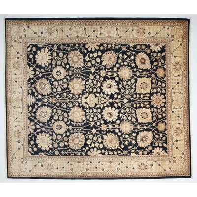 Ziegler Hand-Knotted Black Area Rug