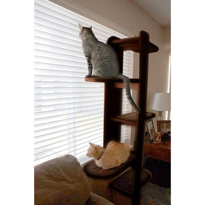 Purrsilla Right Facing Cat Tree Size: 60 H x 32 W x 24 D, Color: White / Light Brown
